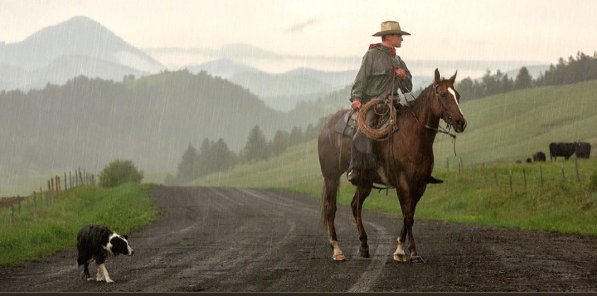 Medicine Hat Cowboy Poetry Foundation